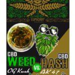 CBD Hash vs CBD weed – 9% CBD