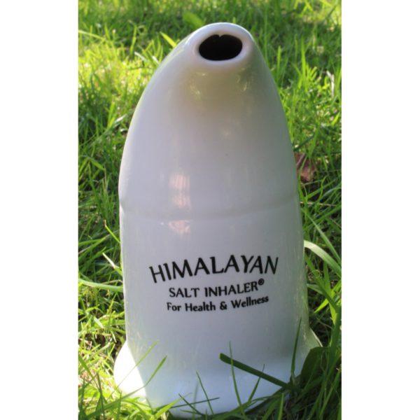 himalaya saltpibe