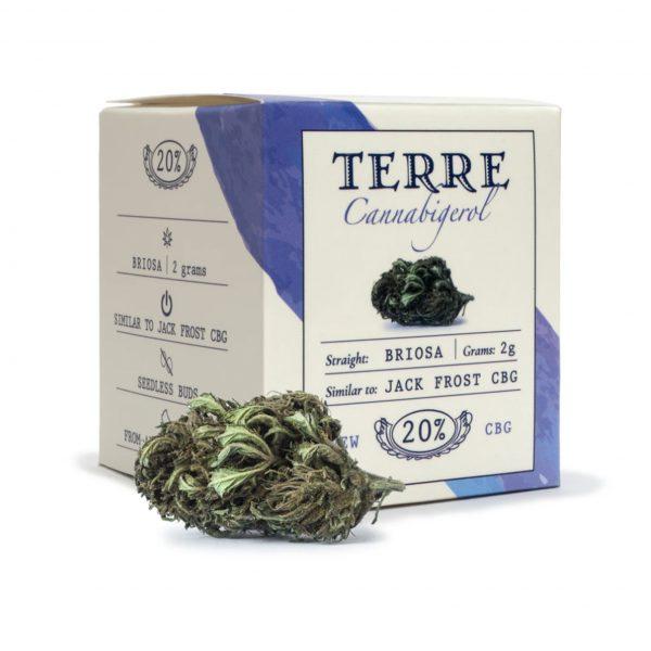 briosa cbd topskud Jack Frost cannabis 2