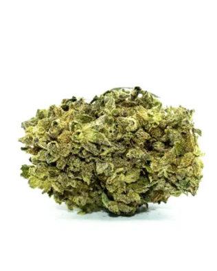 Dr Smoke Master Kush CBD topskud – 2g