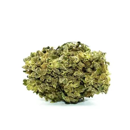 dr smoke master kush cbd topskud