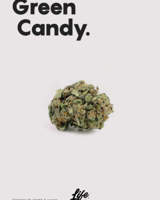 Life CBD Green Candy topskud – 7% CBD