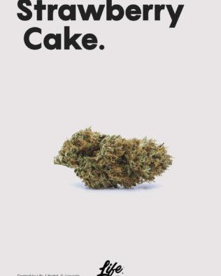 Life CBD Strawberry Cake topskud – 16% CBD