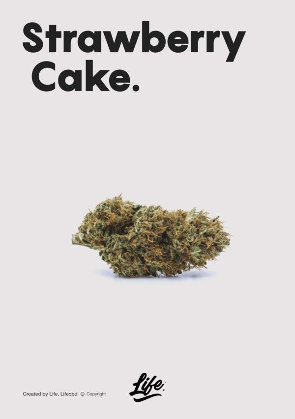 life cbd strawberry cake topskud