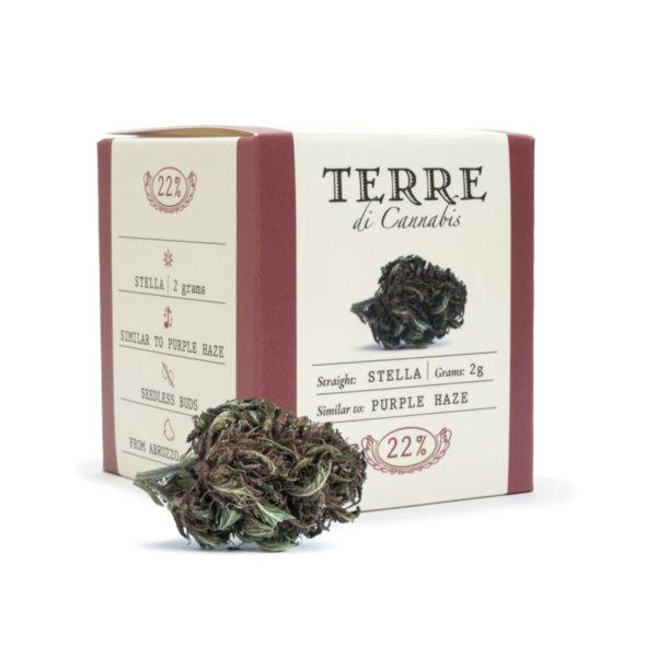 stella cbd topskud cannabis purple haze 2