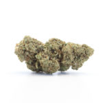 The Tree CBD Green Cure topskud – 11% CBD (Outdoor)