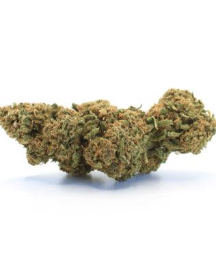 The Tree CBD Orange Cookies topskud – 12% CBD (Drivhus)