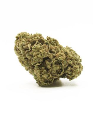 The Tree CBD Skywalker OG topskud – 9,5% CBD (Drivhus)