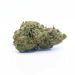 The Tree CBD Amnesia topskud – 21% CBD (Indoor)