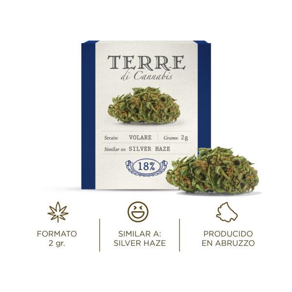 volare cbd topskud cannabis silver haze